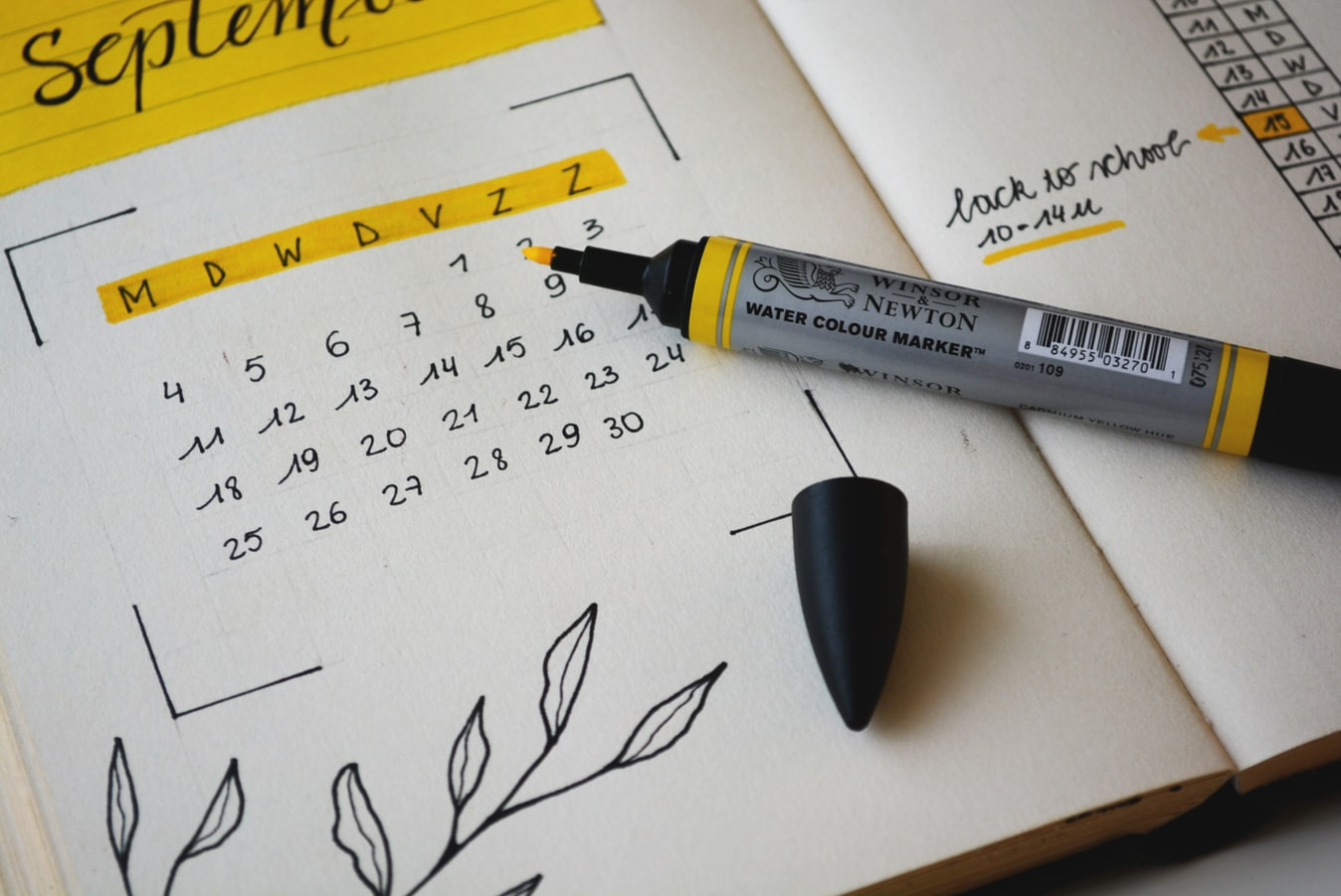 Comment créer un planning éditorial pour votre blog et vos réseaux sociaux ?